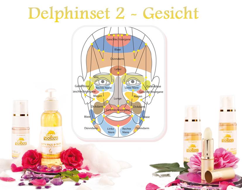 DELPHIN SET 2